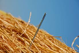 Sometimes that needle in the haystack can be found